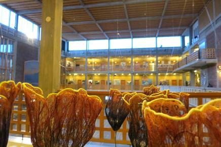 Kiruna City Hall, 5/11 – 9/12 2015