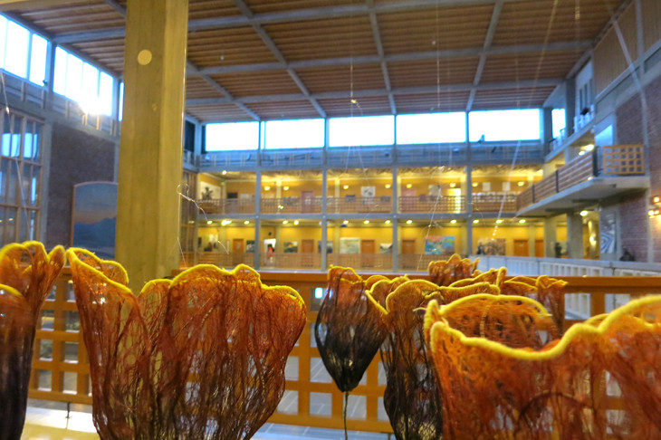 Resilience in Kiruna